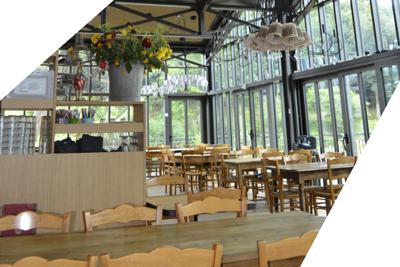 Améliorer le confort acoustique de votre salle de restaurant