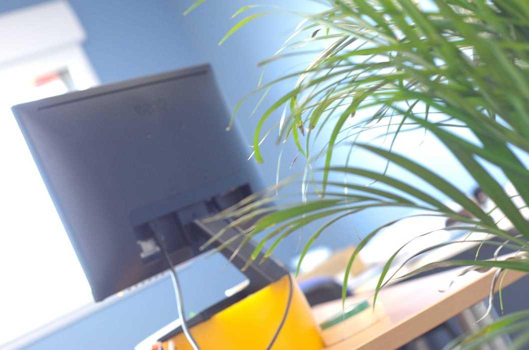 Cloisons / doublage / plafonds / menuiseries : ateliers et bureaux - Cavan (22) dsc1582